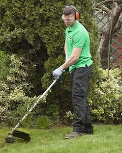 Gardening Services in Kingston upon Thames