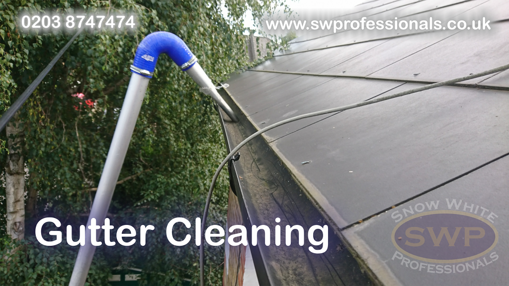 Gutter cleaning from the ground with powerful vacuum machine attached 4k action camera recording a video and pictures